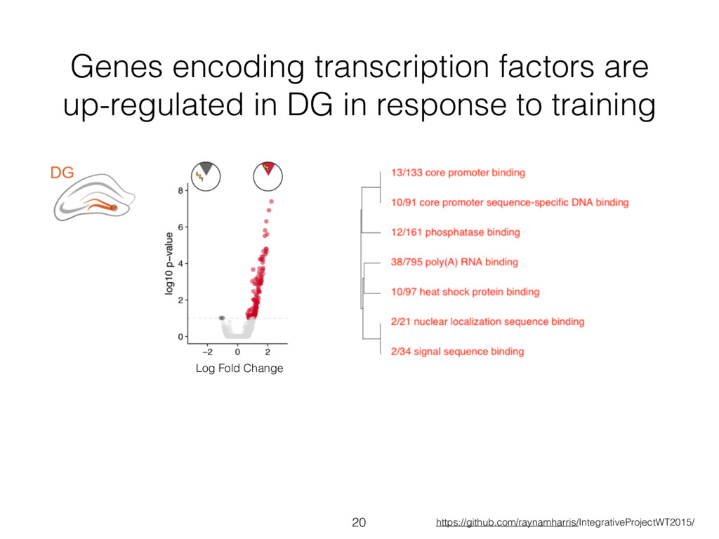 Genes encoding transcription factors are up-reg...