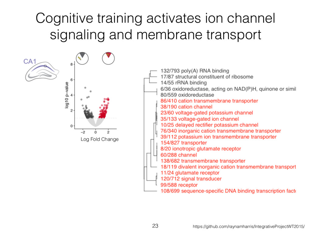 Cognitive training activates ion channel signal...