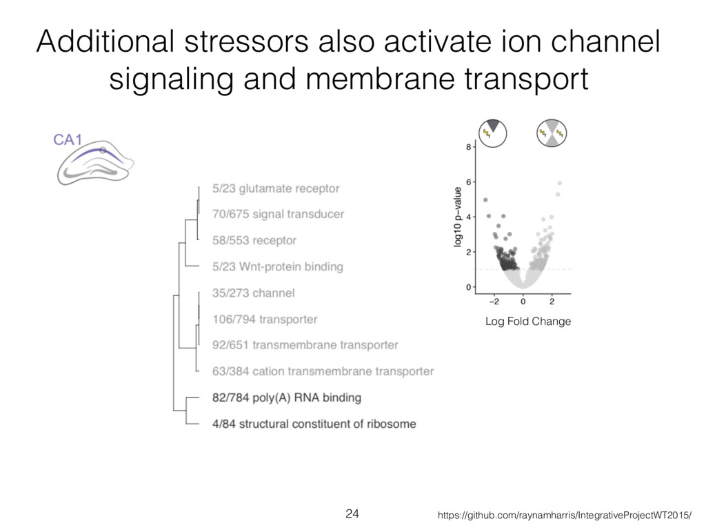 Additional stressors also activate ion channel ...