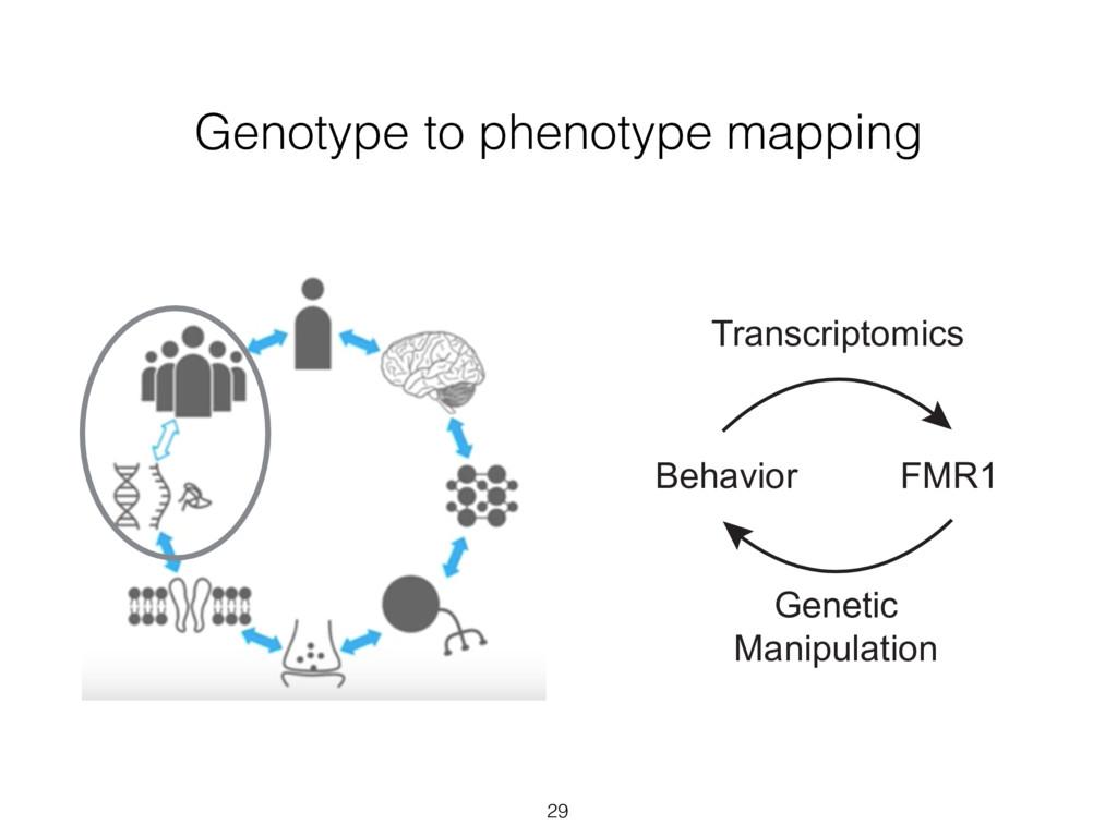 Genotype to phenotype mapping 29 Phenotypes Tra...