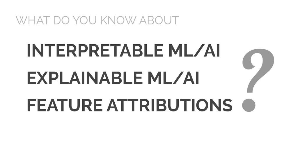 INTERPRETABLE ML/AI EXPLAINABLE ML/AI FEATURE A...