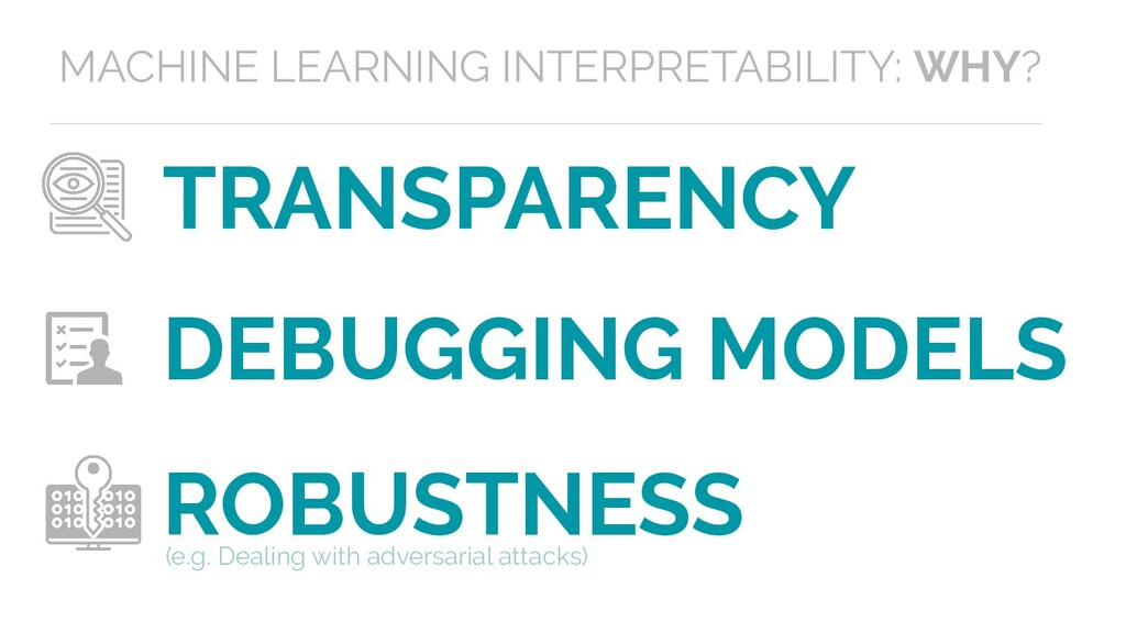 TRANSPARENCY DEBUGGING MODELS ROBUSTNESS (e.g. ...