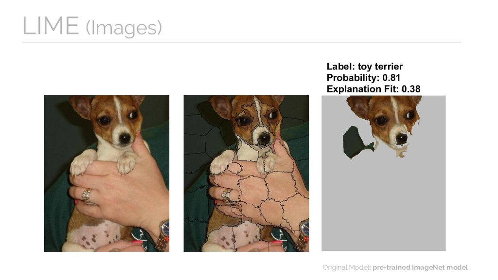 Label: toy terrier Probability: 0.81 Explanatio...