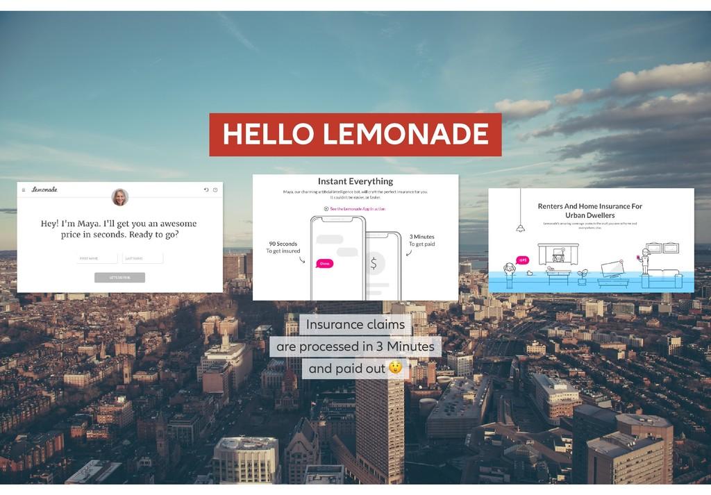 HELLO LEMONADE HELLO LEMONADE Insurance claims ...