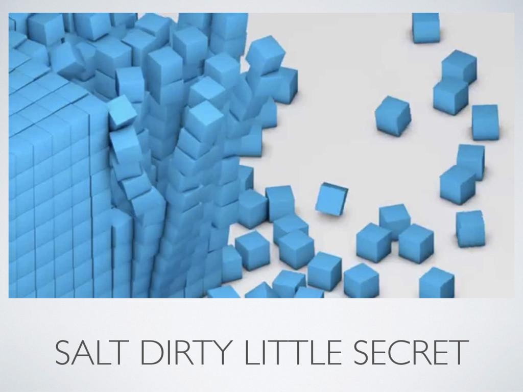 SALT DIRTY LITTLE SECRET