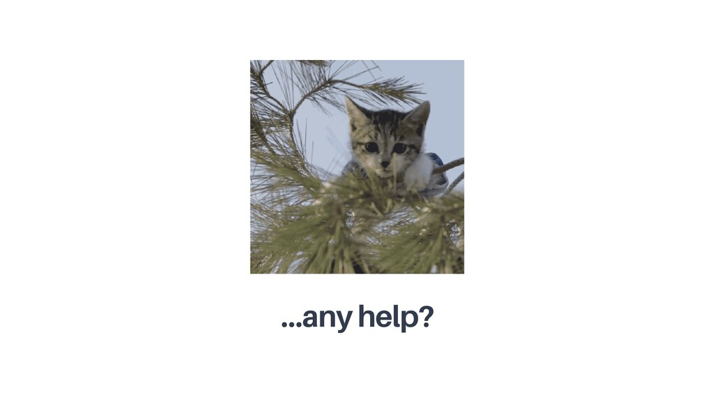 …any help?