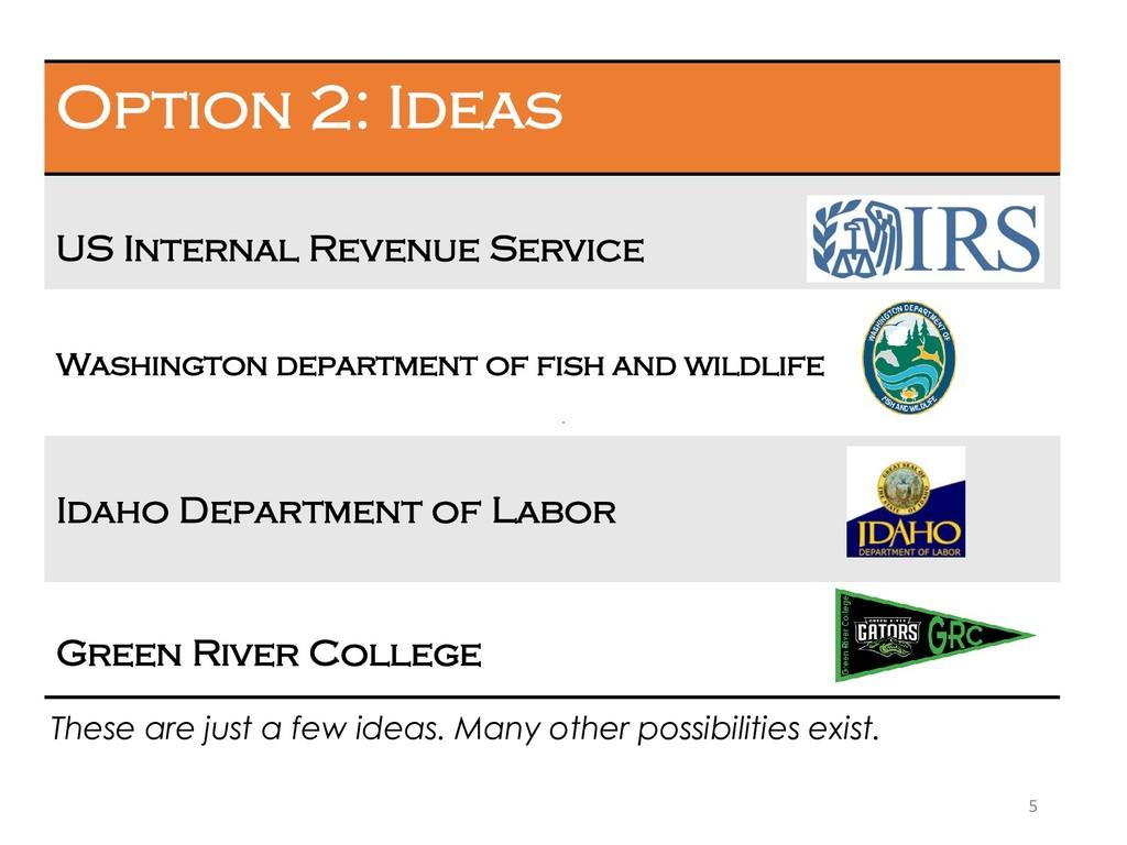 5 Option 2: Ideas US Internal Revenue Service W...