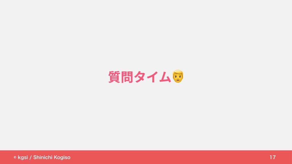 © kgsi / Shinichi Kogiso 17 質問タイム
