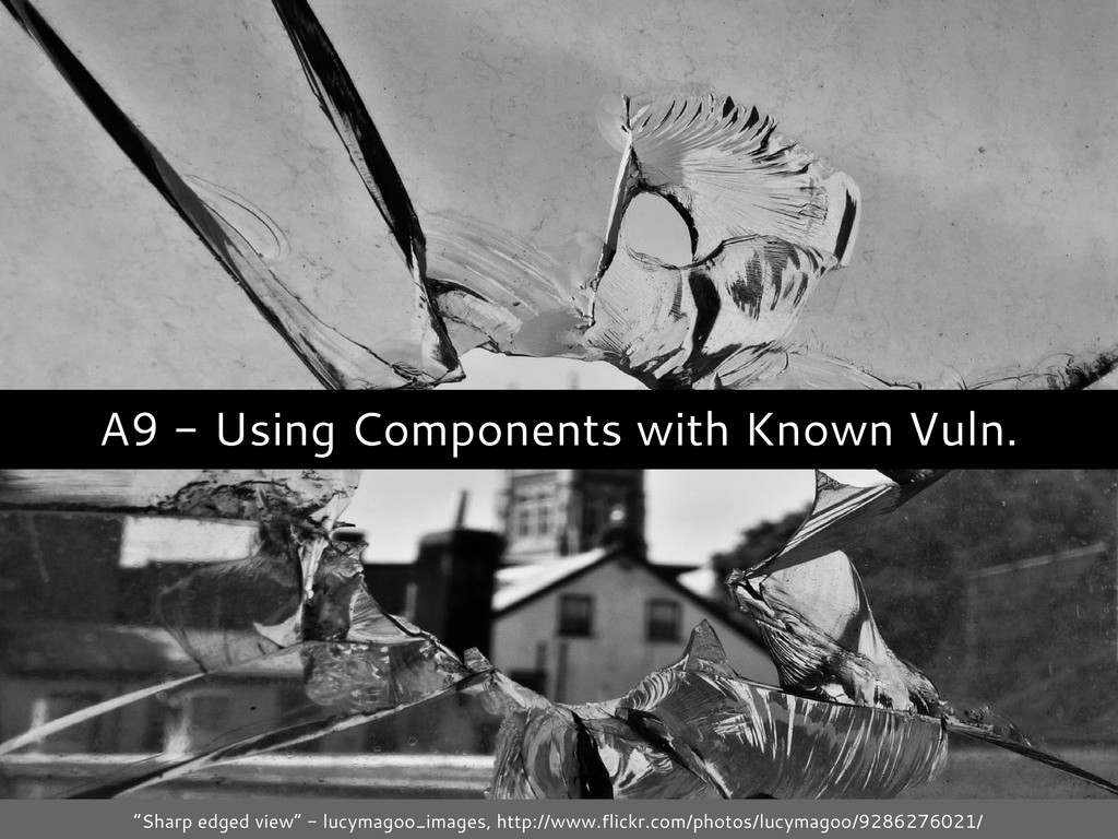 "A9 - Using Components with Known Vuln. ""Sharp e..."