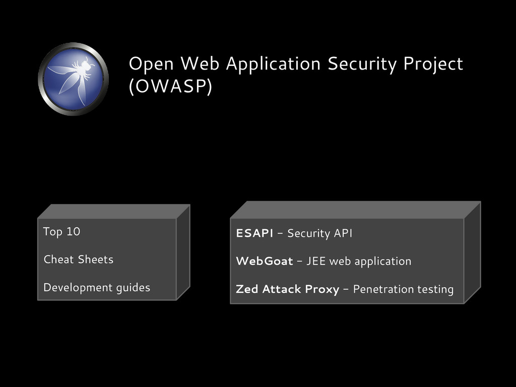 Open Web Application Security Project (OWASP) T...