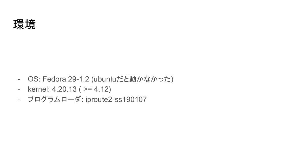 環境 - OS: Fedora 29-1.2 (ubuntuだと動かなかった) - kerne...