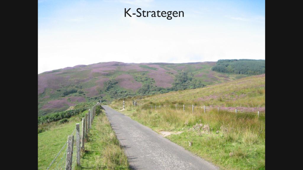 Bild Busch Zitat Wiki K-Strategen