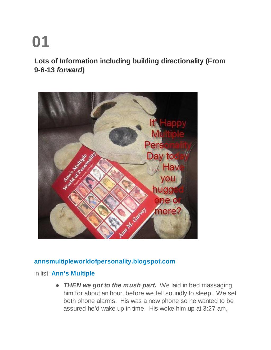 01 Lots of Information including building direc...