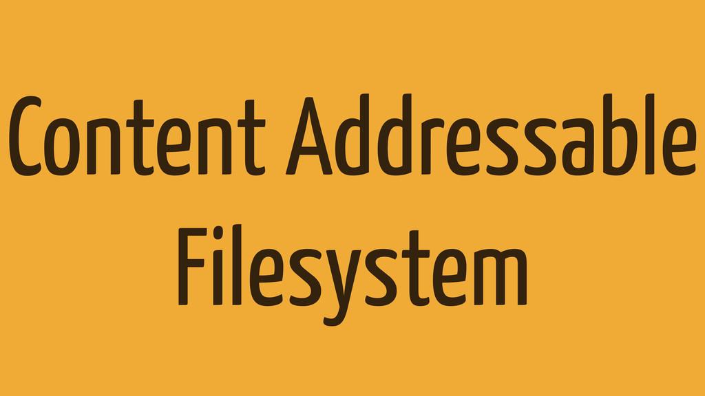 Content Addressable Filesystem