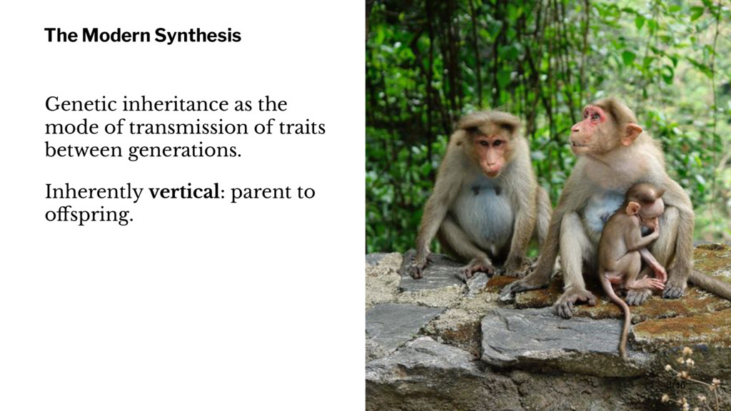 The Modern Synthesis Genetic inheritance as the...