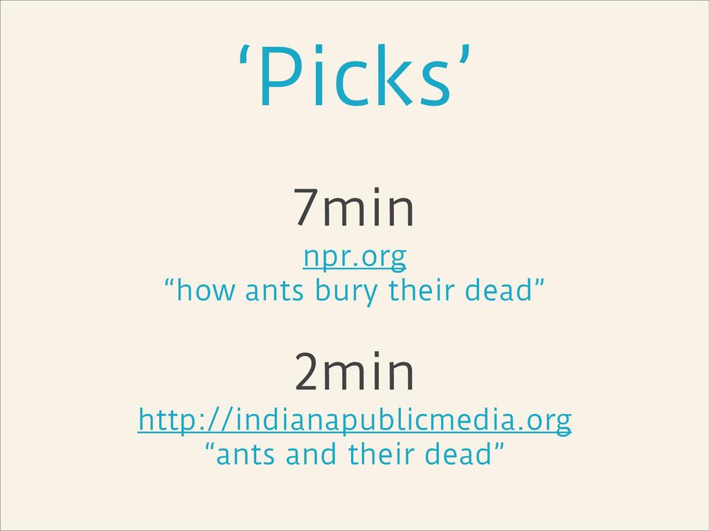 "'Picks' 7min npr.org ""how ants bury their dead""..."