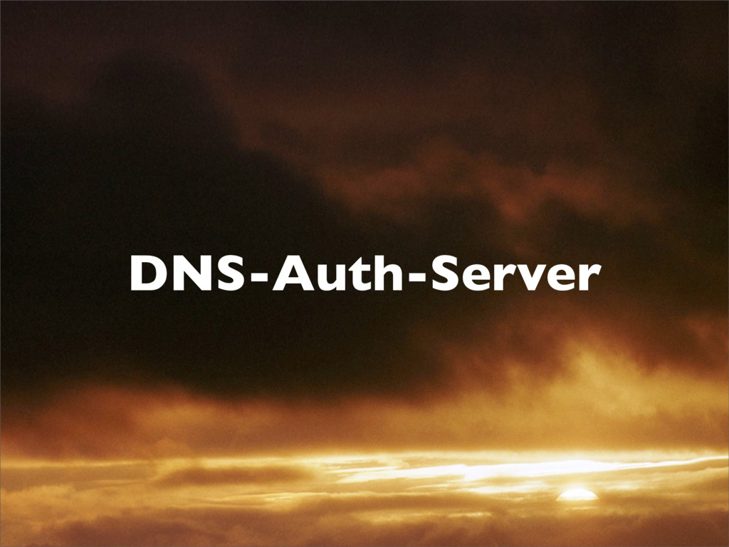 DNS-Auth-Server