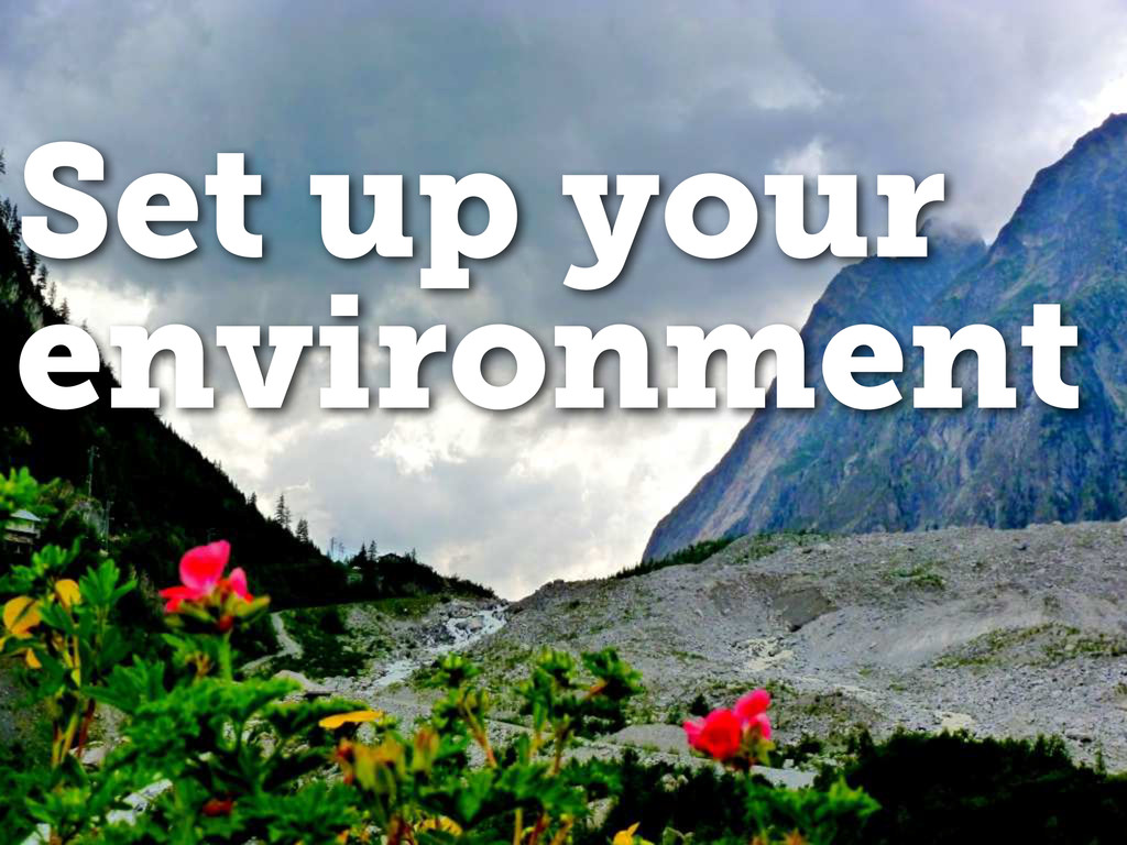 Set up your environment