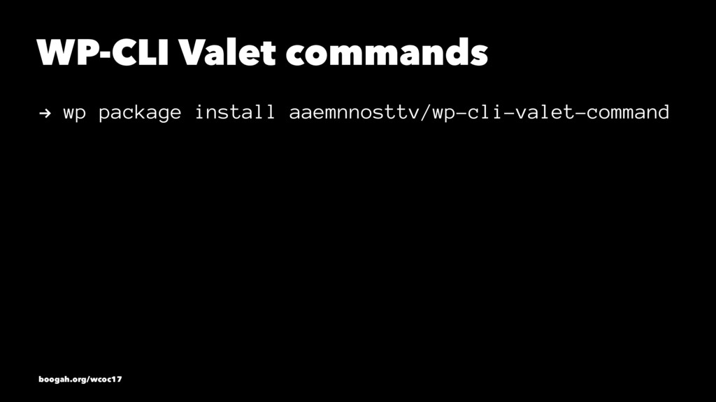 WP-CLI Valet commands ! wp package install aaem...