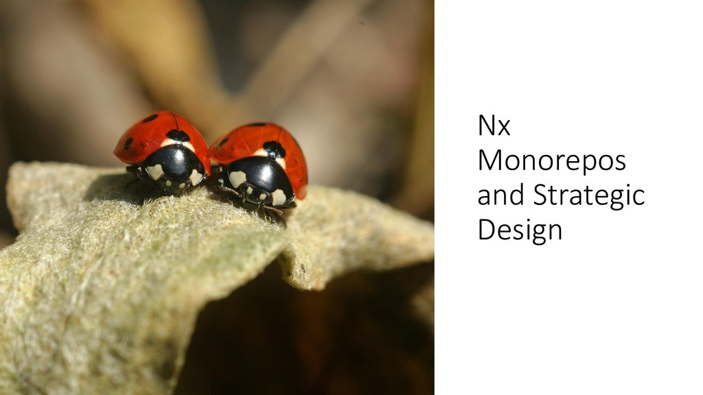 @ManfredSteyer Nx Monorepos and Strategic Design