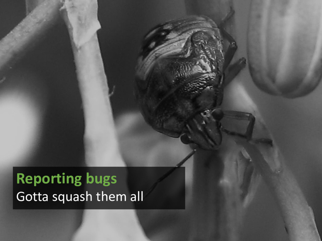 Reporting bugs Gotta squash them all