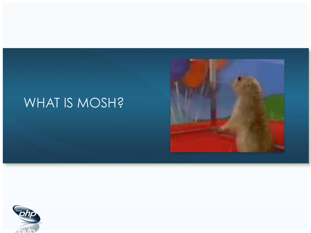 WHAT IS MOSH?