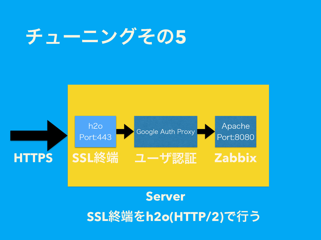 "νϡʔχϯάͦͷ5 HTTPS Server (PPHMF""VUI1SPYZ ""QBDIF..."