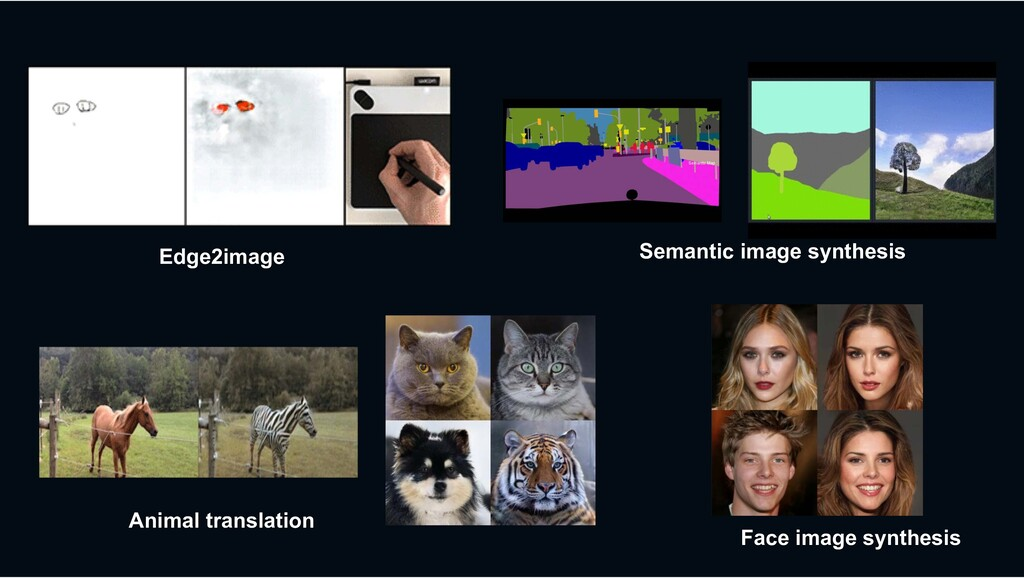 Animal translation Semantic image synthesis Fac...