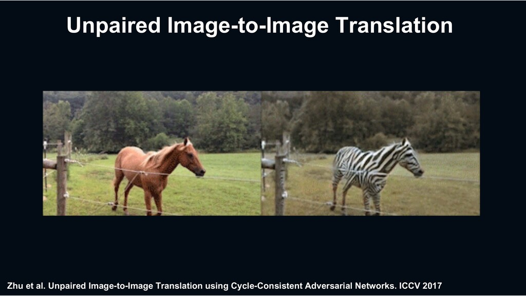 Zhu et al. Unpaired Image-to-Image Translati...