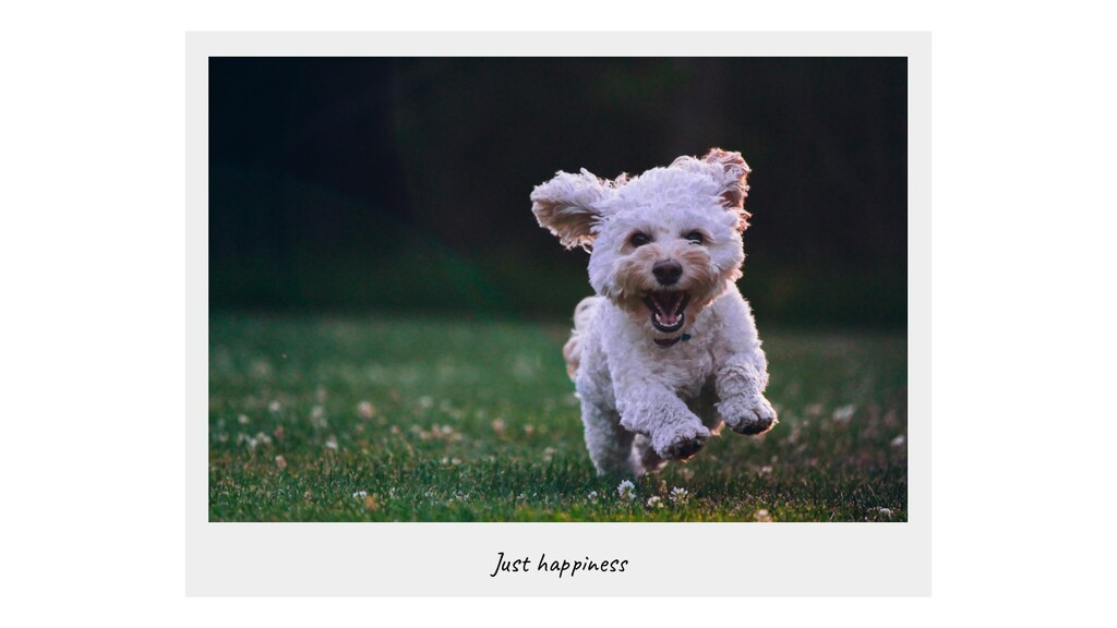 Just happiness