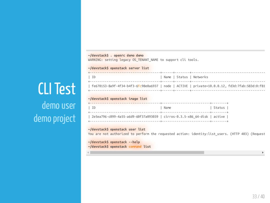 33 / 40 CLI Test demo user demo project ~/devst...