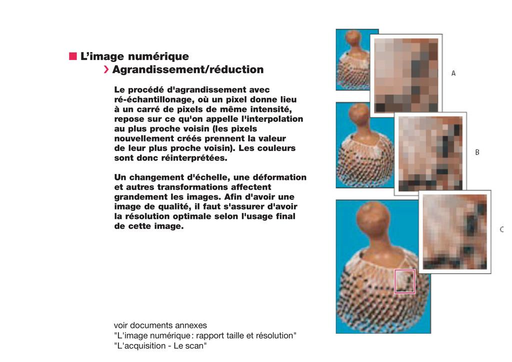 n L'image numérique › Agrandissement/réduction ...