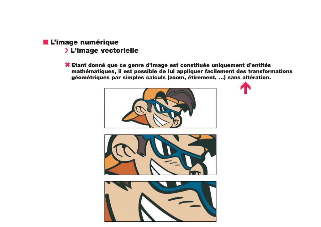 n L'image numérique › L'image vectorielle 6 Eta...
