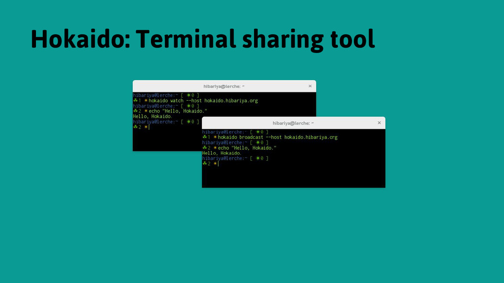 Hokaido: Terminal sharing tool