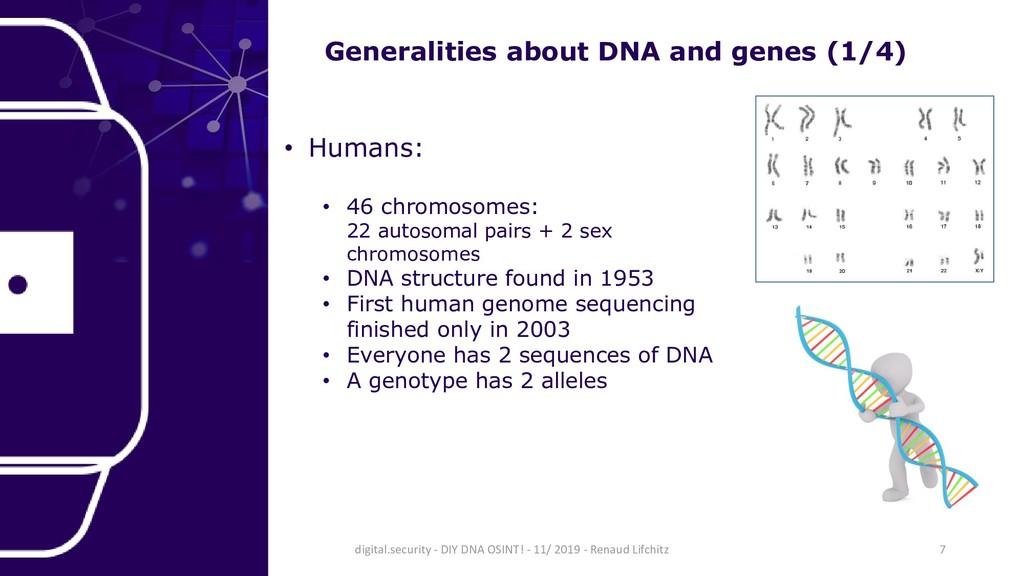 • Humans: • 46 chromosomes: 22 autosomal pairs ...