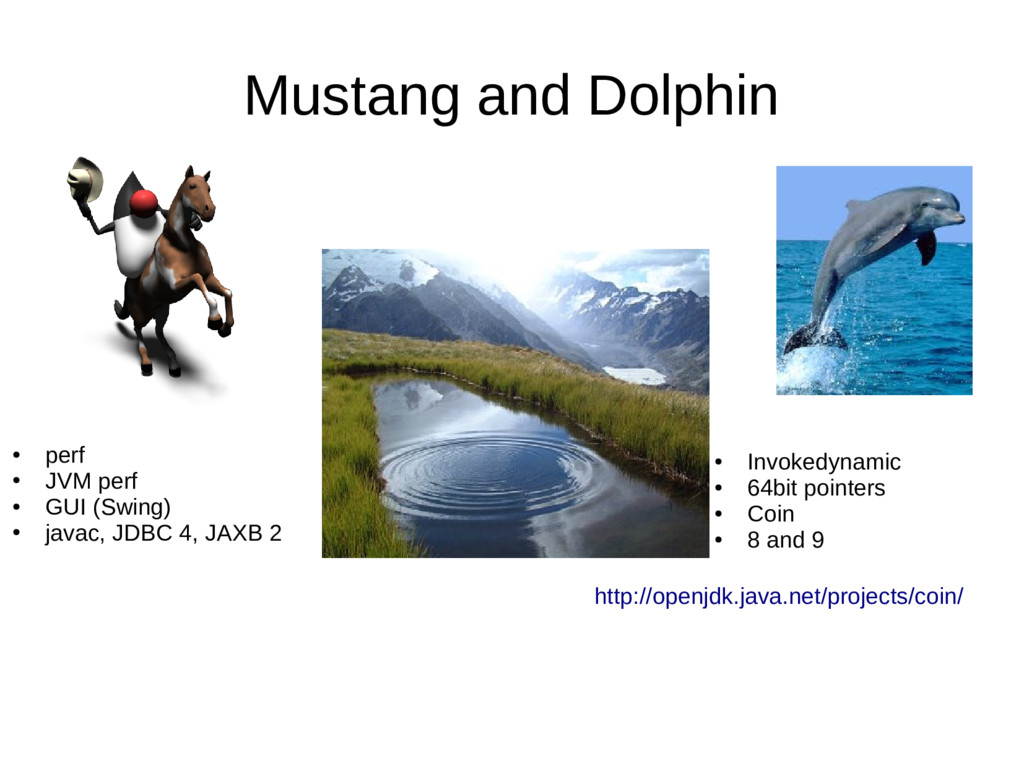 Mustang and Dolphin ● Invokedynamic ● 64bit poi...