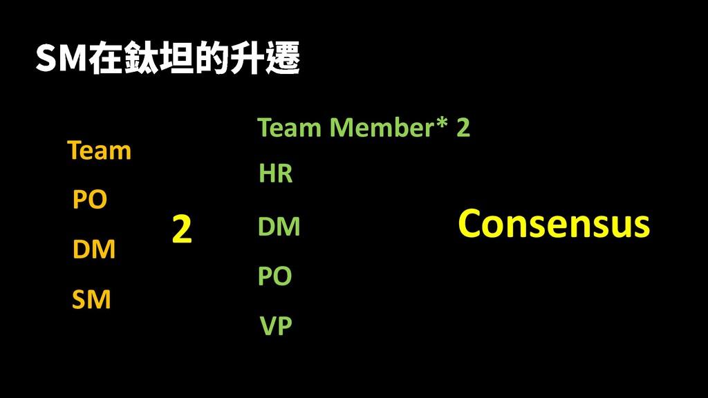 Team PO DM SM 2 Team Member* 2 HR DM PO Consens...