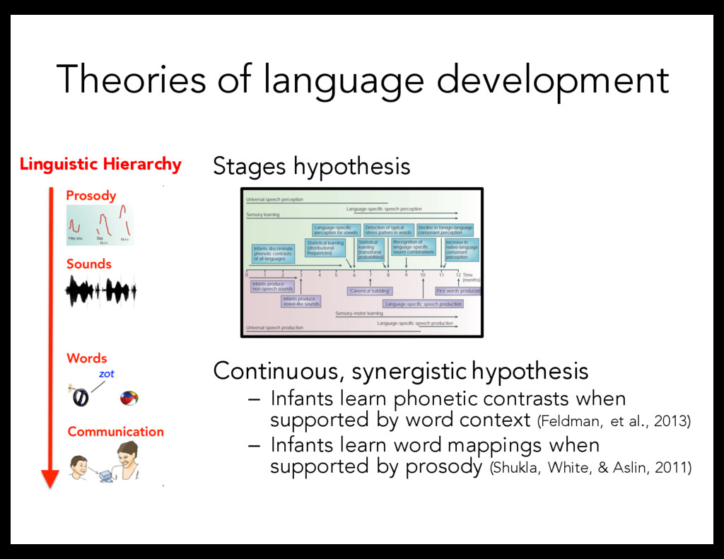 Theories of language development Stages hypothe...