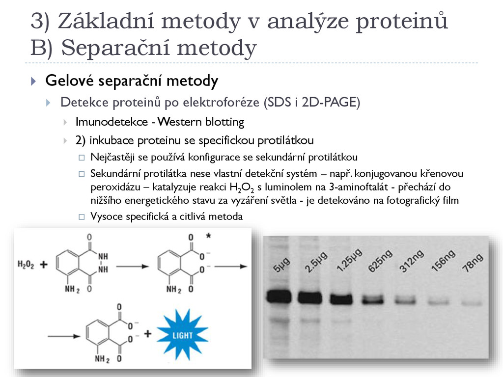 3) Základní metody v analýze proteinů B) Separa...