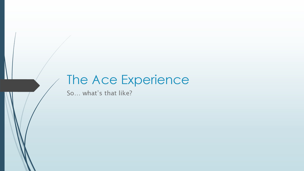 The Ace Experience So… what's that like?