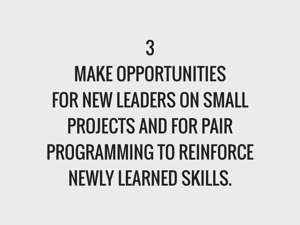 3 MAKE OPPORTUNITIES FOR NEW LEADERS ON SMALL P...