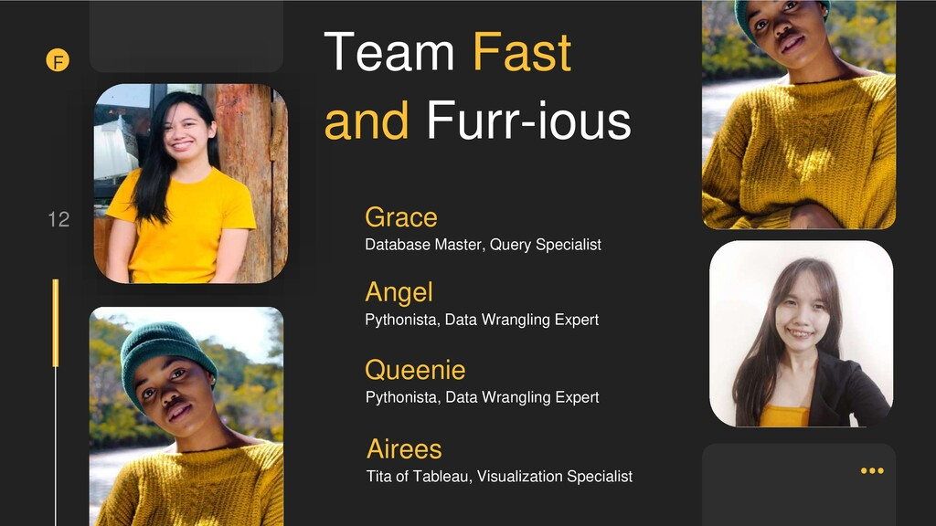 12 Team Fast and Furr-ious Grace Database Maste...