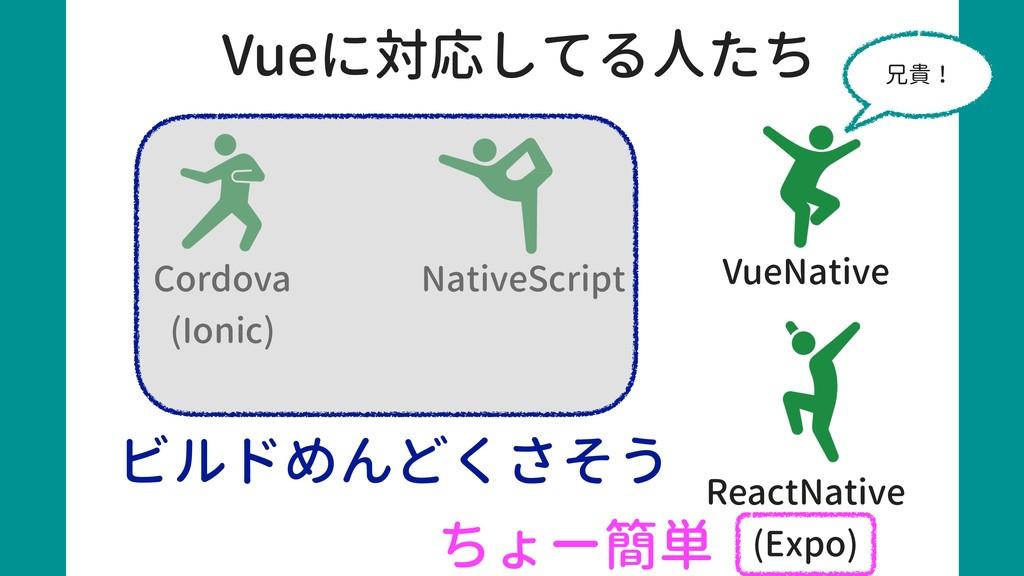 Cordova (Ionic) NativeScript VueNative Vueに対応して...