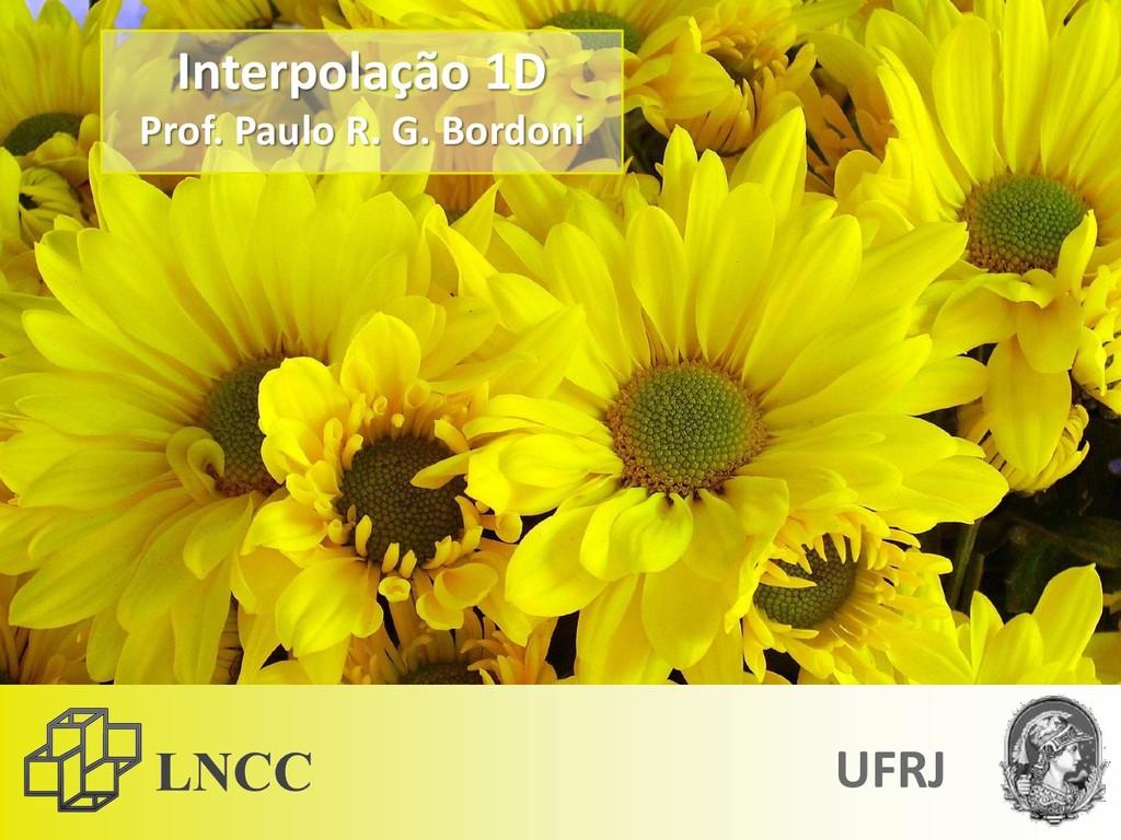 Interpolação 1D Prof. Paulo R. G. Bordoni UFRJ