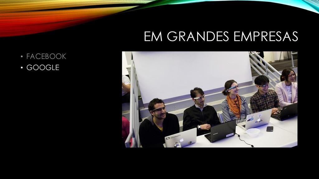 EM GRANDES EMPRESAS • FACEBOOK • GOOGLE