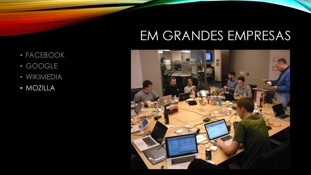 EM GRANDES EMPRESAS • FACEBOOK • GOOGLE • WIKIM...