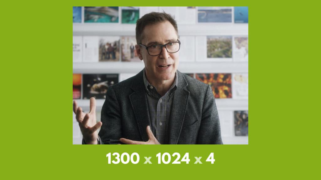 1300 x 1024 x 4
