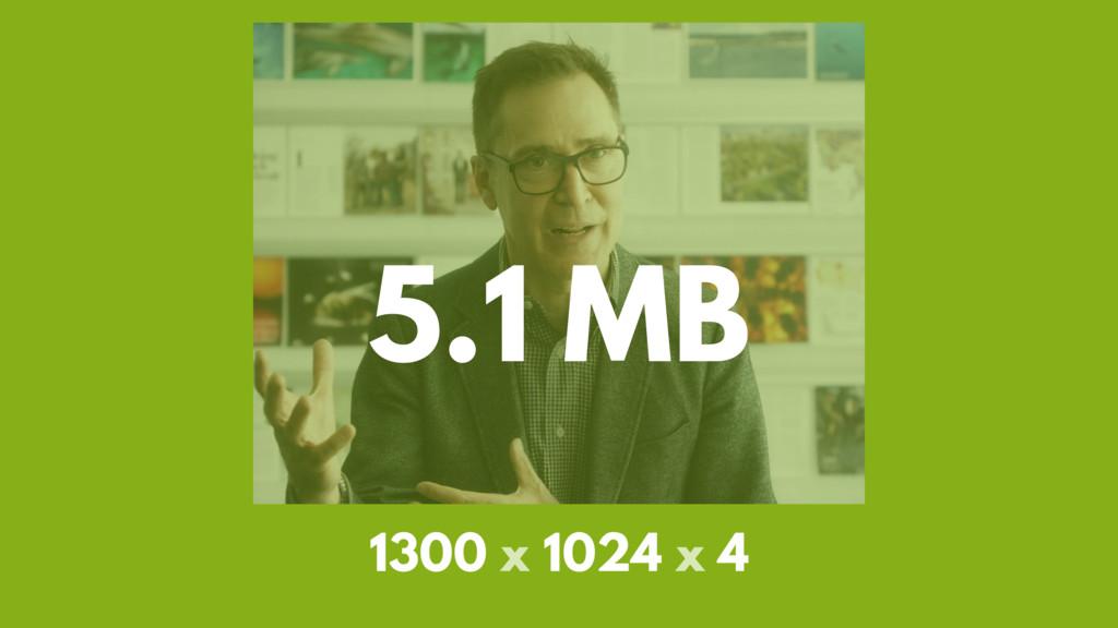 5.1 MB 1300 x 1024 x 4