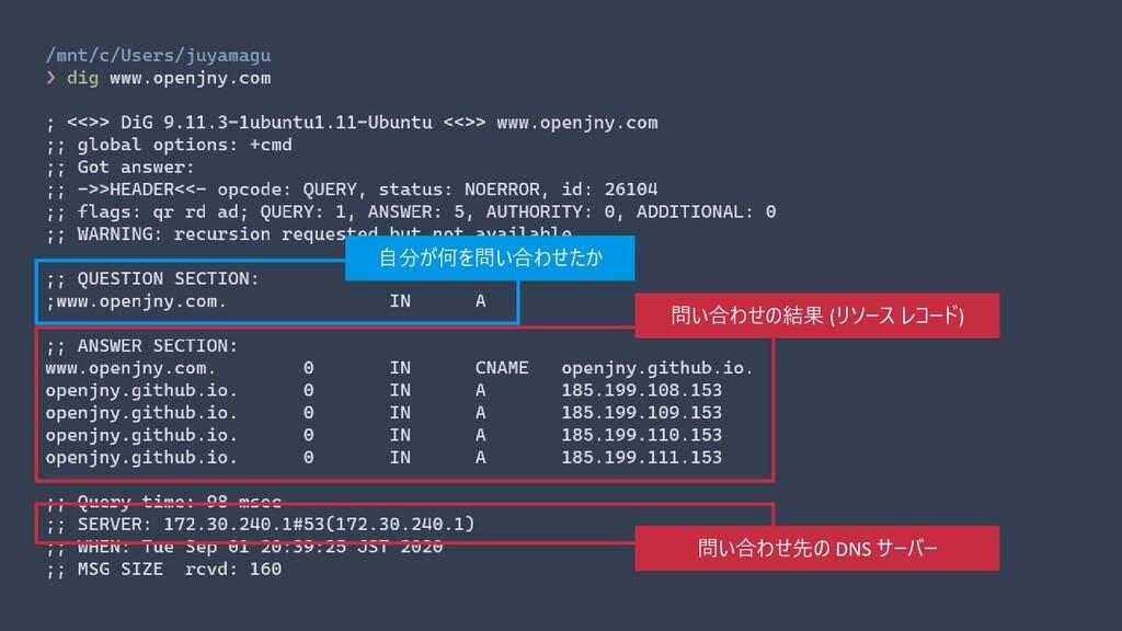 自分が何を問い合わせたか 問い合わせの結果 (リソース レコード) 問い合わせ先の DNS サ...