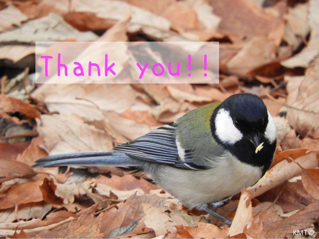 Thank you!! KMT©